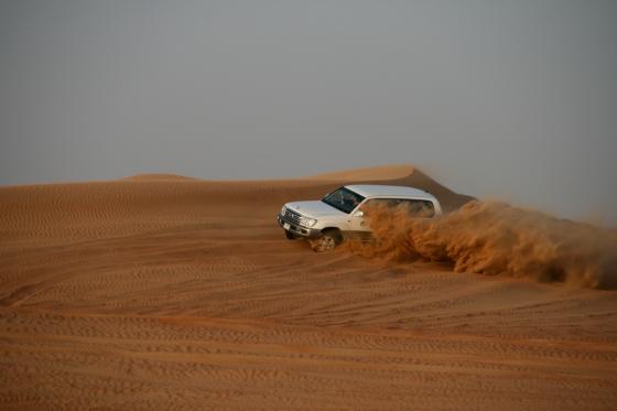 08_Desert19