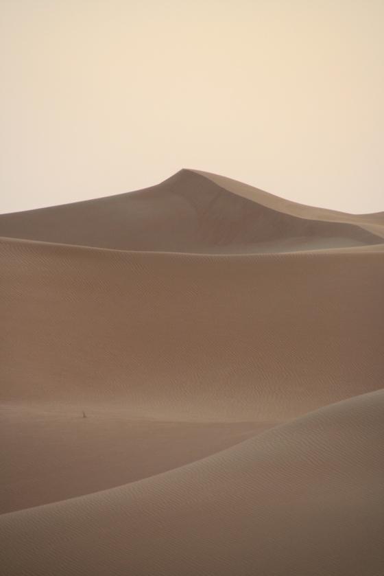 08_Desert55